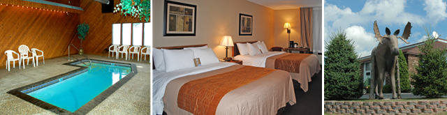 Quality Inn And Suites Newberry Newberry UnitedStates